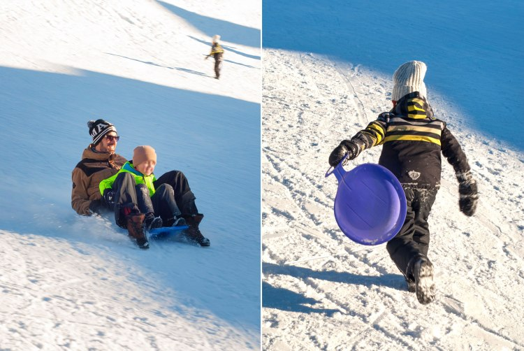 sledge-ski-vacations-holidays-kids-winter-pulka-luge-lesarcs-double3