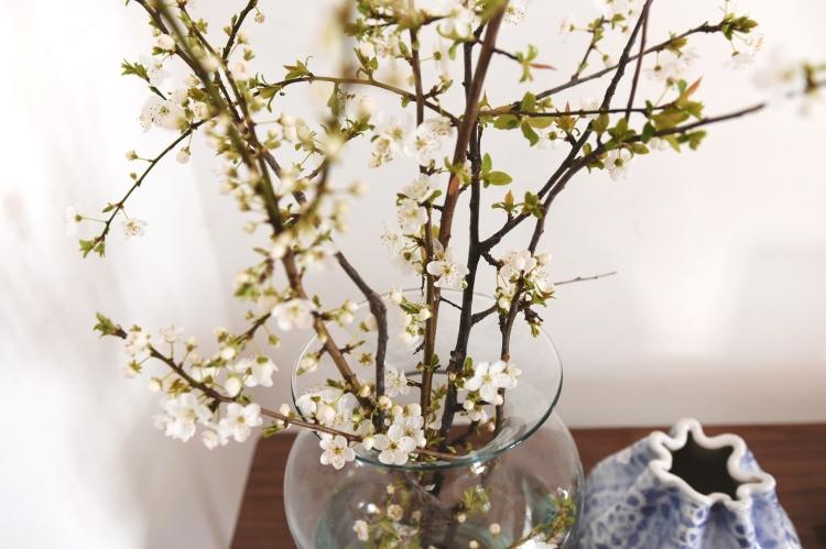 almond-branch-flowers-spring-viggosmama.jpg
